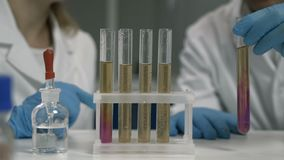 Researcher dropping the reagent into test tube stock video
