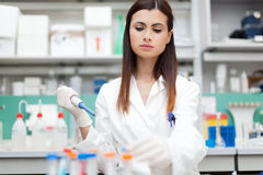 Researcher examining a test tube Royalty Free Stock Image