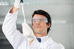 Researcher Filling Solution Into Test Tube Stock Images