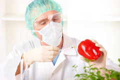 Researcher holding up a GMO vegetable Royalty Free Stock Photos