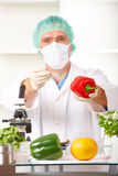 Researcher holding up a GMO vegetable in the lab Royalty Free Stock Photos