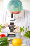 Researcher holding up a GMO vegetable in the lab