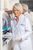 Researcher Loading Samples In Analyzer Stock Image