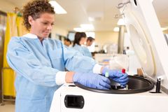 Researcher Loading Samples in Centrifuge Stock Image
