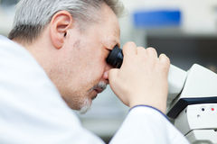 Researcher loooking through microscope Royalty Free Stock Photos