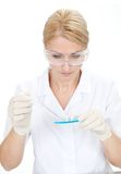 Researcher making an expering using petri dishes Royalty Free Stock Images