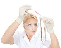 Researcher mixing liquids inside the tube Stock Image