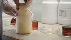 Researcher prepares to conduct chemical experiment in laboratory. Closeup of laboratory worker in gloves opens bottle