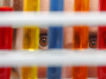 Researcher's eyes. Close-up image of a person's eyes looking through test tubes containing solutions in a laboratory Royalty Free Stock Image