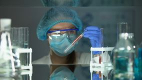 Researcher taking tube with meat sample, food quality, veterinarian analysis. Stock footage stock footage