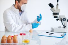 Fresh egg sample quality control in laboratory microscope about avian flu. Researcher wearing white coat analyzing quality of GMO eggs sample while standing at Royalty Free Stock Photo