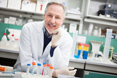 Researcher at work in a laboratory Royalty Free Stock Photo