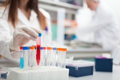 Researcher at work in a laboratory Royalty Free Stock Image