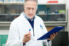 Researcher working in a laboratory Royalty Free Stock Photography