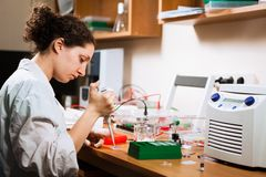Researcher works at lab royalty free stock photos