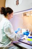 Researcher works at lab in a laminar box Stock Image