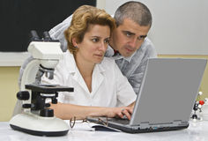 Researchers. Two researchers colleagues analyzing the results of the experiment on a laptop royalty free stock photo