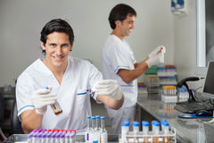 Researchers Analyzing Samples In Lab Royalty Free Stock Image