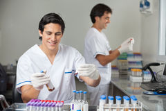 Researchers Analyzing Samples In Laboratory Royalty Free Stock Photo