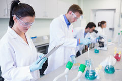 Researchers carrying out experiments in the lab Royalty Free Stock Photo