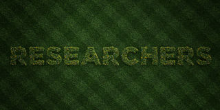 RESEARCHERS - fresh Grass letters with flowers and dandelions - 3D rendered royalty free stock image Royalty Free Stock Photography