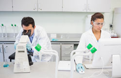 Researchers using microscope and computer in the lab Royalty Free Stock Image