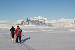 Researchers who go skiing in the winter Antarctic Stock Image
