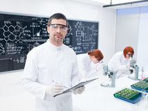 Researchers working in a chemistry lab Royalty Free Stock Photography