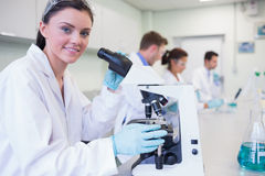 Researchers working on experiments in the lab Stock Image
