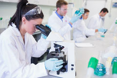 Researchers working on experiments in lab Royalty Free Stock Photo