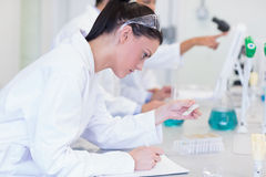 Researchers working on experiments in the laboratory Royalty Free Stock Photo