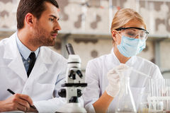 Researches in science laboratory. Stock Photo