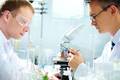 Researching. Portrait of two male chemists researching in laboratory stock photos