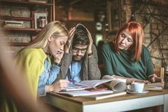 Researching together project is easier. Lifestyle Stock Photo
