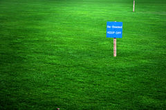 Reseeded sign. Re-seeded sign in a green grass lawn Royalty Free Stock Photos