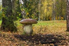 Reserv Abramtsevo Royaltyfri Foto