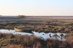 Reserv da natureza do pântano Imagem de Stock Royalty Free