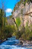 Reserv för bergflodnatur fotografering för bildbyråer