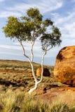 Reserv för jäkelmarmorKarlu Karlu beskydd, nordligt territorium, Australien arkivbild