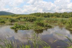 Reserva Arkutino, Bulgária Fotografia de Stock Royalty Free