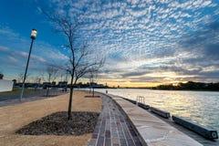 Reserva de Barangaroo em Sydney Foto de Stock