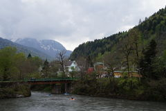 Reserva de Cáucaso Fotografia de Stock Royalty Free