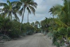 Reserva de la bioserra Sian ka'an Mexico empty rough road with palm trees graded. Rough Yucatan peninsula road in eco park Tulum empty cloud blue sky royalty free stock images