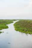Reserva de las aves acuáticas de Thale Noi Imagen de archivo libre de regalías