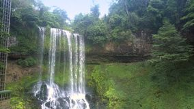 Reserva de naturaleza con la elevación hacia arriba cerca de la cascada almacen de metraje de vídeo