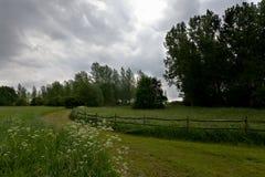 Reserva de naturaleza del prado, het Vinne, Zoutleeuw, Bélgica Fotografía de archivo