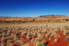 Reserva de naturaleza del rand de Namib (Namibia) Fotografía de archivo