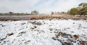 Reserva de naturaleza holandesa sobre un día hivernal Imagenes de archivo