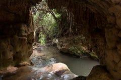 Reserva de naturaleza de la corriente de Amud en Israel septentrional Fotos de archivo libres de regalías