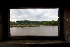 Reserva de naturaleza de madera del lago de la orilla de la cabina de la caza de Reed, het Vinne, Zoutleeuw, Bélgica Imágenes de archivo libres de regalías